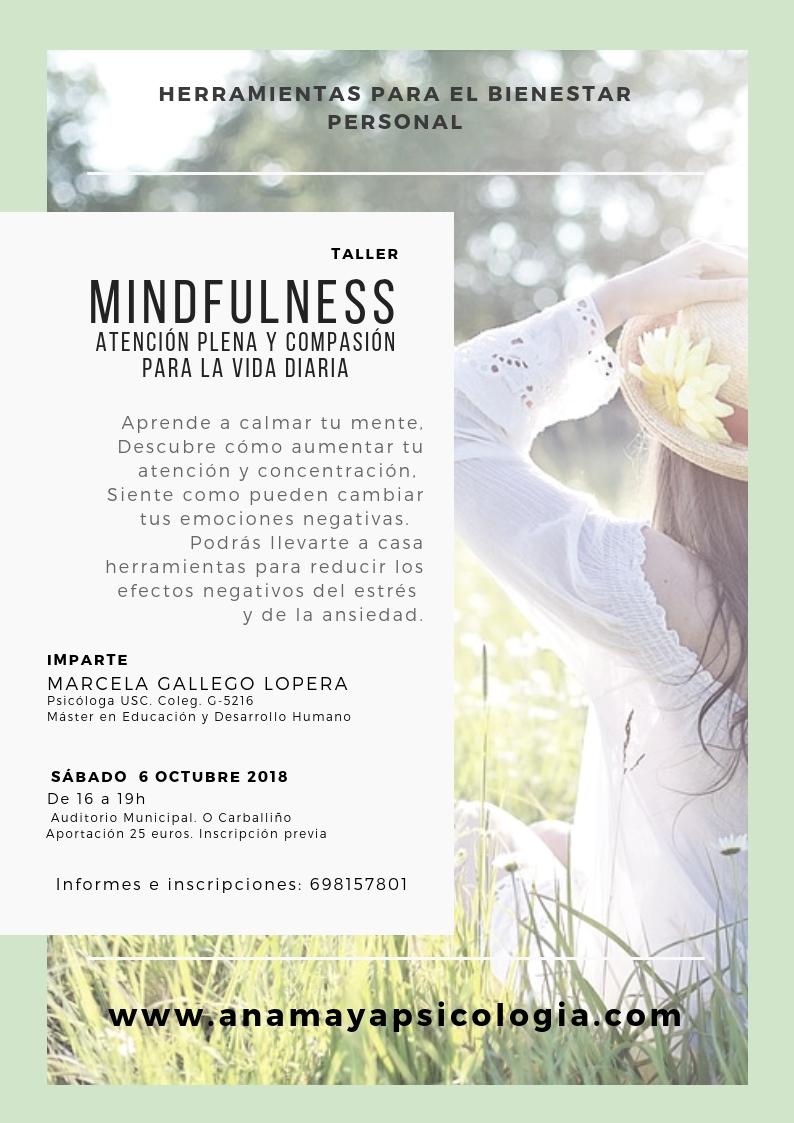 Taller Mindfulness para la vida diaria. Octubre 6 de 2018