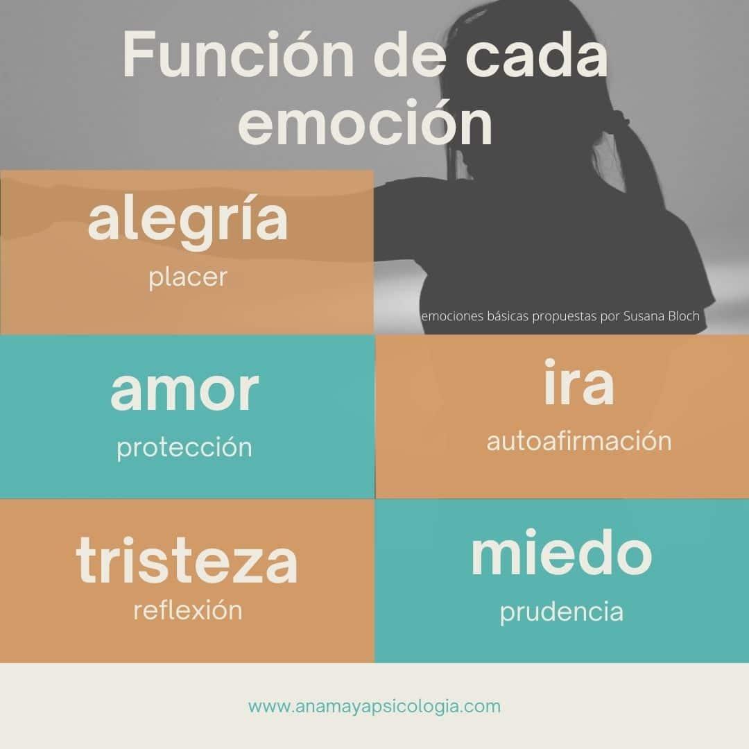 Función de cada emoción